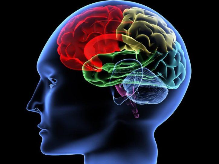 técnicas de integración cerebral